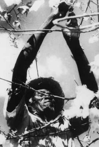 Imagem do filme: O PAÍS DE SÃO SARUÊ
