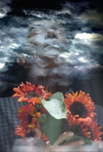 Imagem do filme: Girassol Vermelho | Filme em Processo